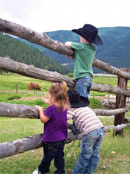 3-kids-on-fence
